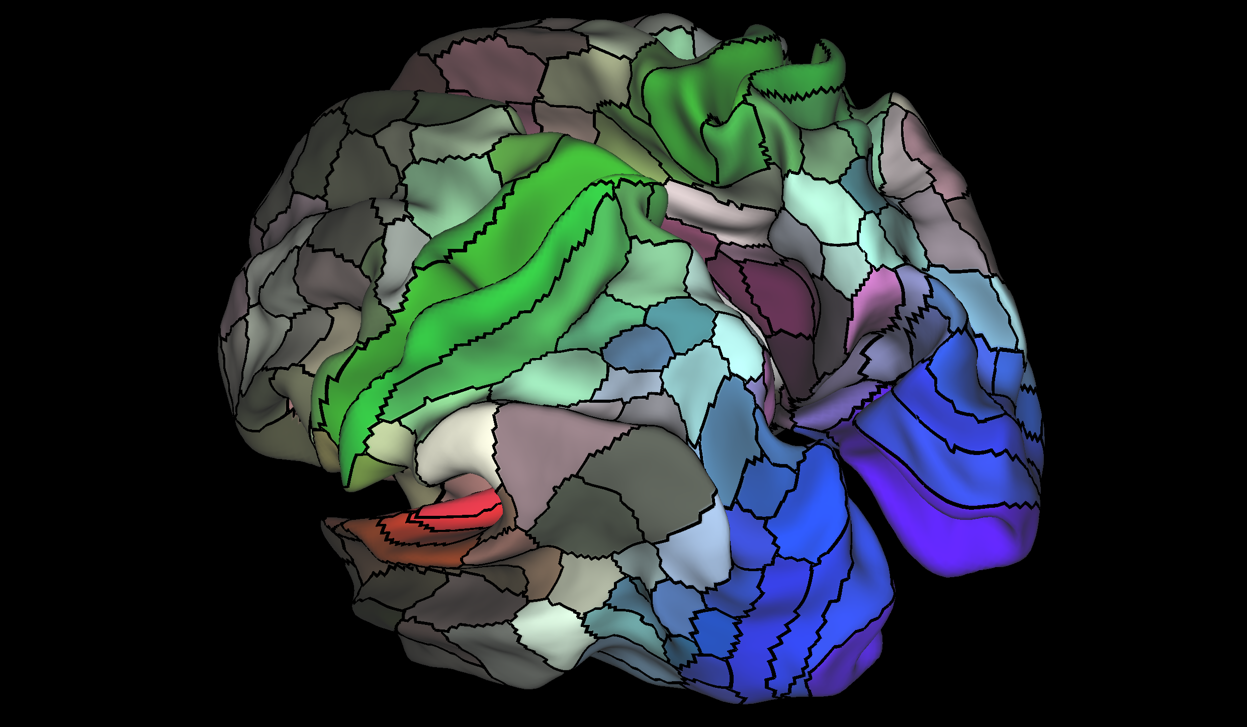 The HCP's multi-modal cortical parcellation