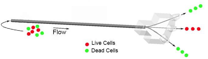 Fiber Microfluidics Device Schematic