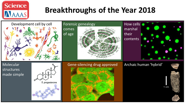 Science Breakthroughs of the Year 2018