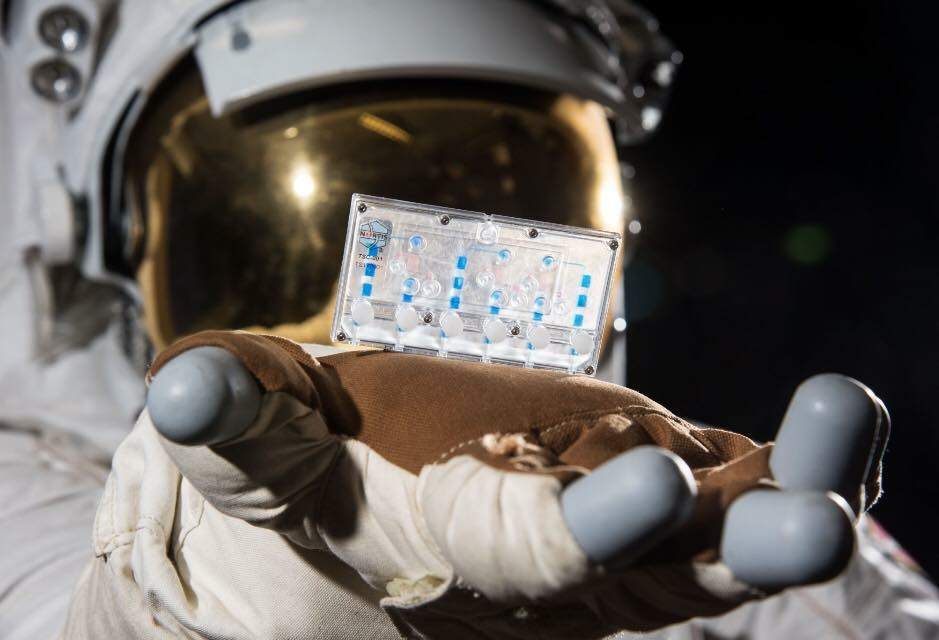 Tissue Chips in Space