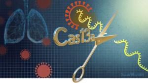 Artistic rendering of CRISPR Cas13a as scissors