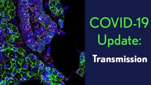 COVID-19 Update: Transmission