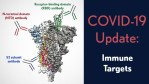 COVID-19 Update: Viral spike with labels Receptor-binding domain (RBD) antibody, N-terminal domain (NTD) antibody, S2 subunit antibody